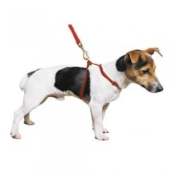 Nylon Dog Harness Red
