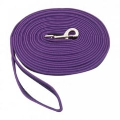 2 Tone Padded Lunge Rein Purple