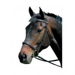 Raised Cavesson Bridle Black