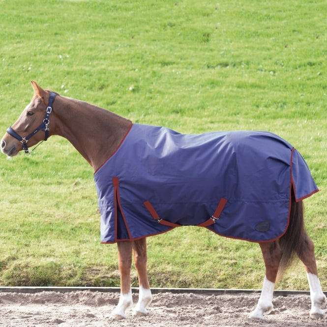 Masta Basic 200g Standard Neck Turnout Rug Navy