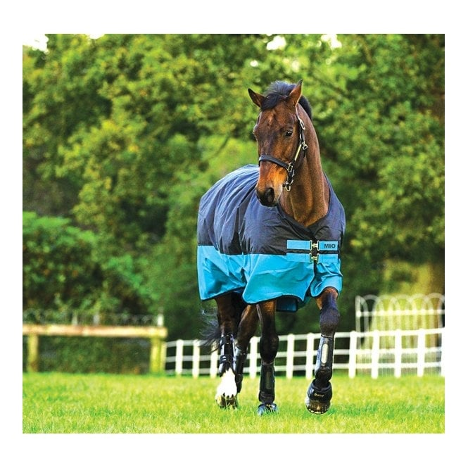 Mio Medium Turnout Rug 200g Turquoise And Black