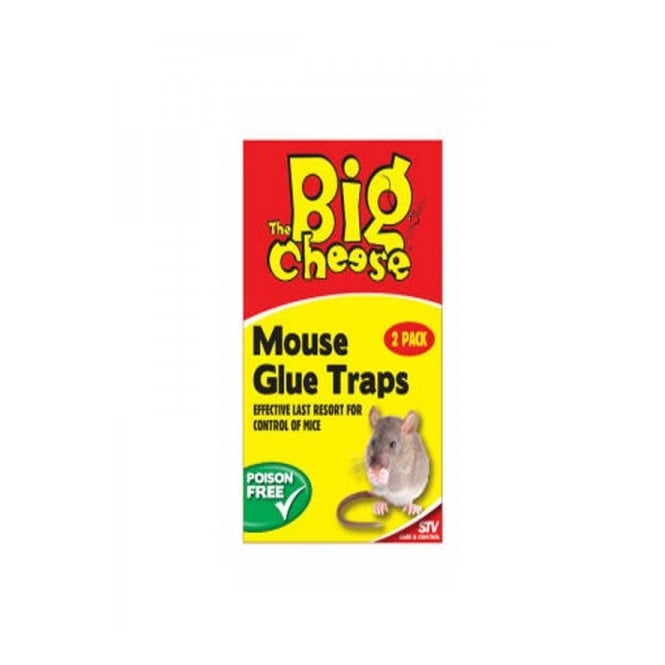 The Big Cheese Mouse Glue Trap Twin Pack