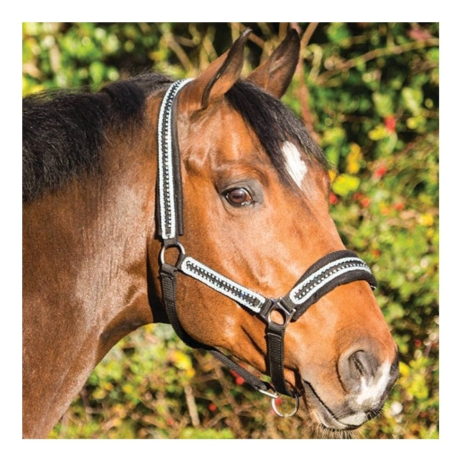 Rambo Diamamte Headcollar Black And Silver
