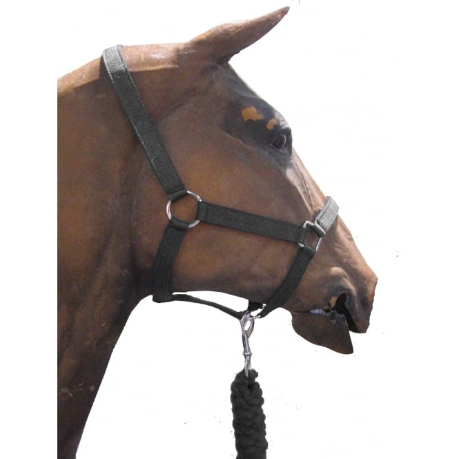 Roma Headcollar and Leadrope Set Black