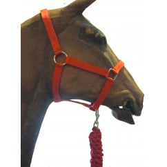 Headcollar and Leadrope Set Red