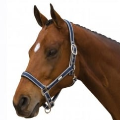 Nylon Headcollar with Neoprene Lining Navy&Silver