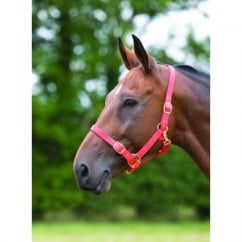 Coloured Adjustable Nylon Headcollar
