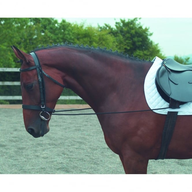 Shires Elastic Horse Riding Training Reins