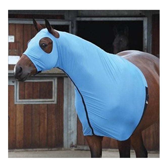Shires Equestrian Full Face Stretch Hood Blue