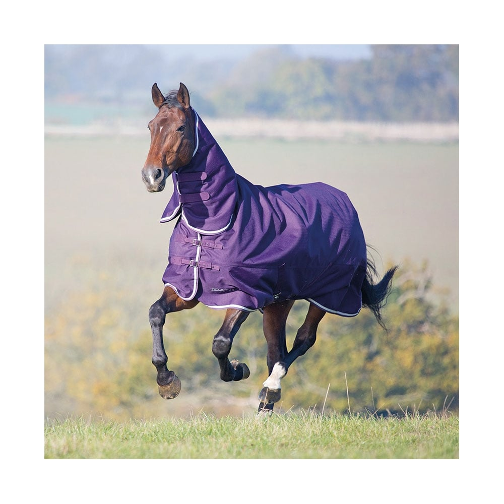 Tempest Plus 200g Combo Turnout Rug Purple White