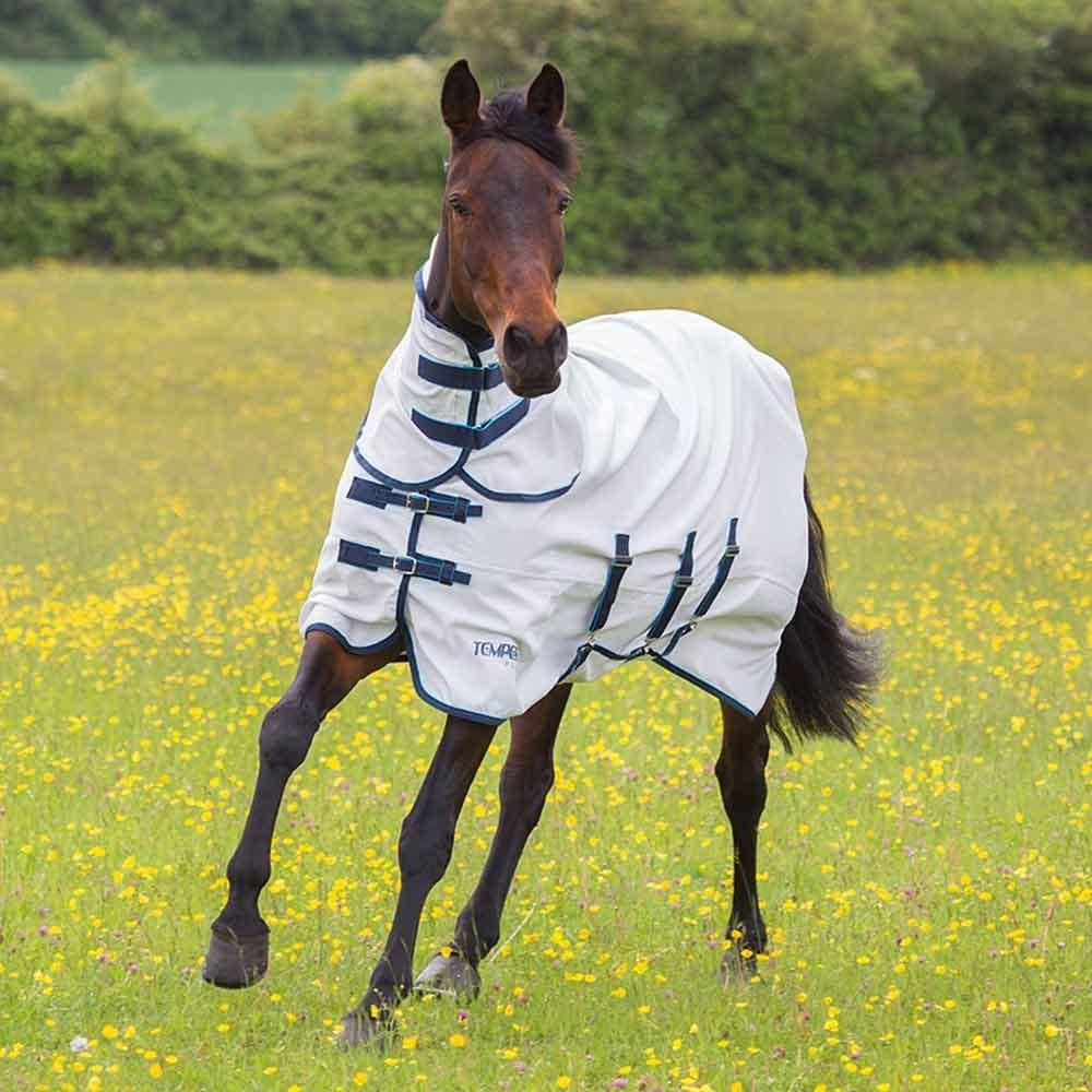 Horsewear Shires Highlander Plus Sweet