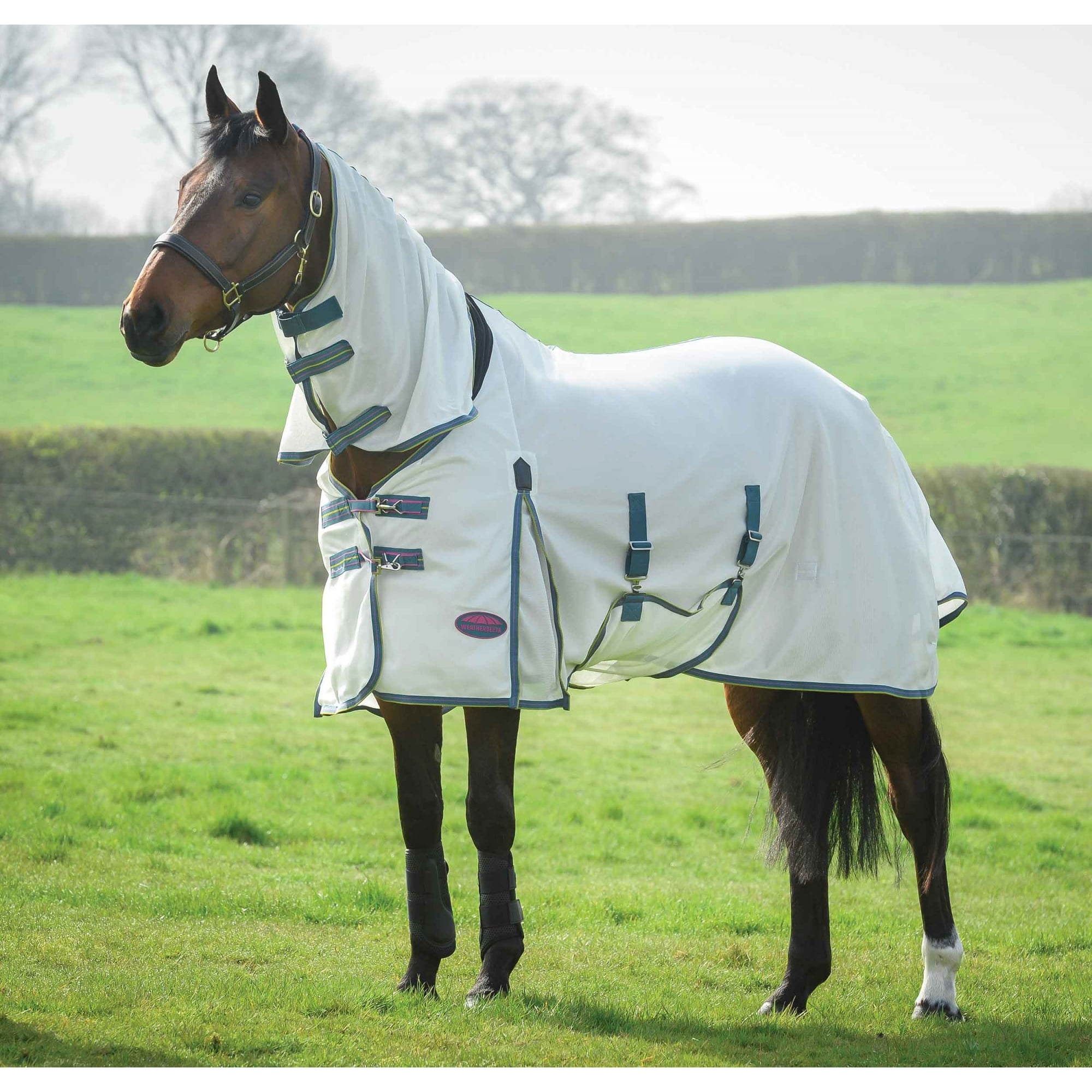 Combo Fly Rug White/Sea Green/Pink