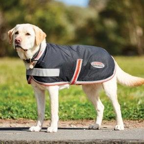 Buster Outdoor Wear Raincoat Dog Coat Lemon Yellow
